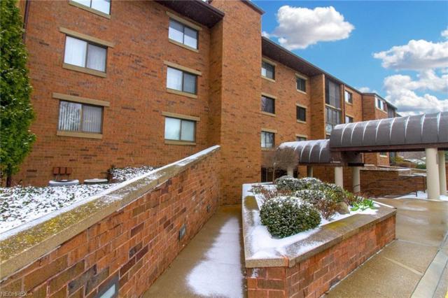 100 Fox Hollow Dr #206, Mayfield Heights, OH 44124 (MLS #3991239) :: The Crockett Team, Howard Hanna