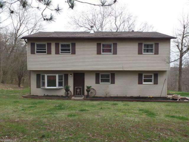 12054 Eddyburg Rd NE, Newark, OH 43055 (MLS #3991393) :: The Crockett Team, Howard Hanna