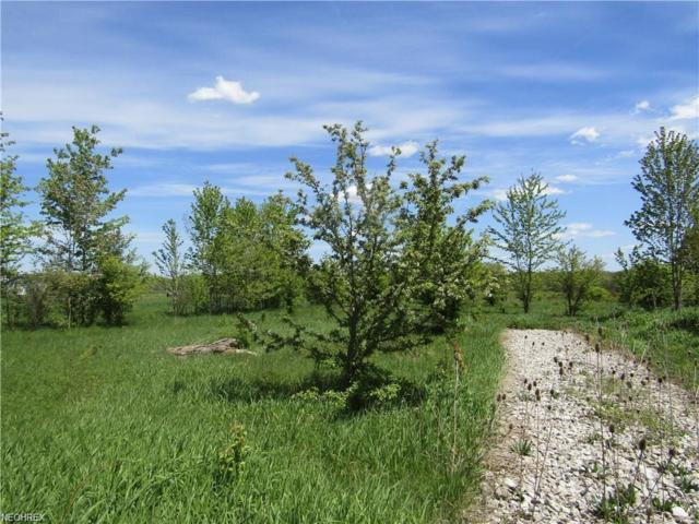 State Route 534, Rome, OH 44085 (MLS #3991630) :: RE/MAX Edge Realty