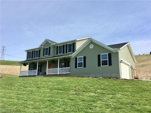 5899 Williams Rd SW, Newcomerstown, OH 43832 (MLS #3991745) :: PERNUS & DRENIK Team