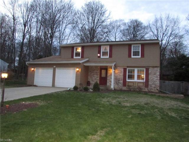 250 Donaldson Dr, Munroe Falls, OH 44262 (MLS #3992203) :: Tammy Grogan and Associates at Cutler Real Estate