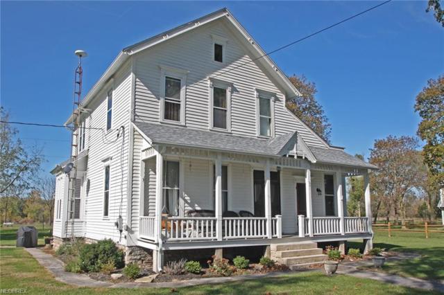 201 Division, Kelleys Island, OH 43017 (MLS #3992240) :: Tammy Grogan and Associates at Cutler Real Estate