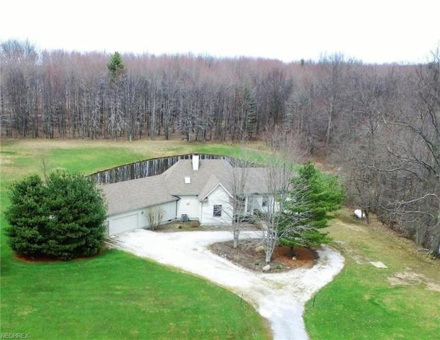 1074 Barbe Ln, Bristolville, OH 44402 (MLS #3992343) :: The Crockett Team, Howard Hanna