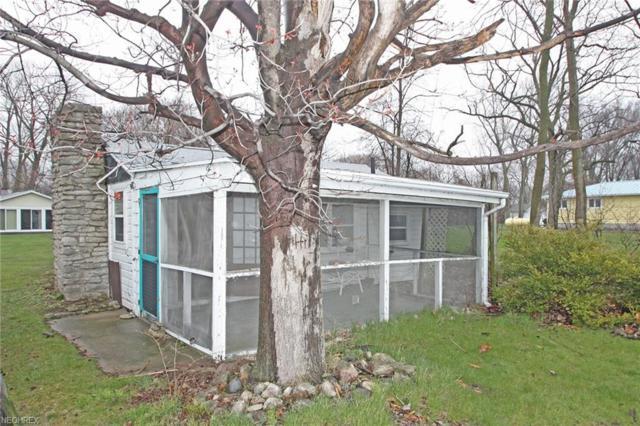 611 E Lakeshore, Kelleys Island, OH 43438 (MLS #3992772) :: Tammy Grogan and Associates at Cutler Real Estate
