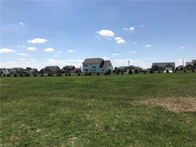 Spring Brook Lot #9217, Wooster, OH 44691 (MLS #3993097) :: The Crockett Team, Howard Hanna