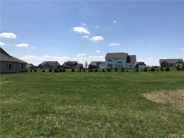 Spring Brook Lot #9218, Wooster, OH 44691 (MLS #3993101) :: RE/MAX Valley Real Estate