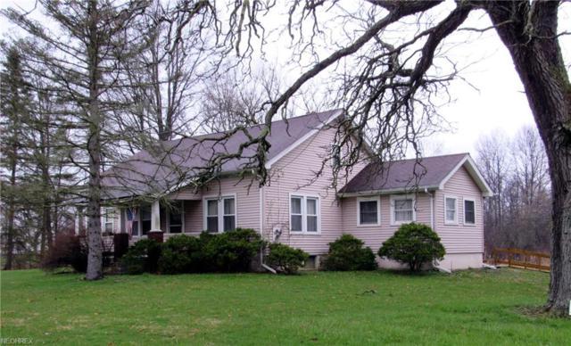 1726 State Rd NW, Warren, OH 44481 (MLS #3993184) :: PERNUS & DRENIK Team