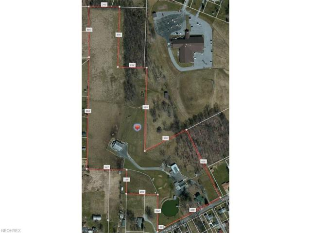 46518 Taylor Ave, New Waterford, OH 44445 (MLS #3993270) :: The Crockett Team, Howard Hanna