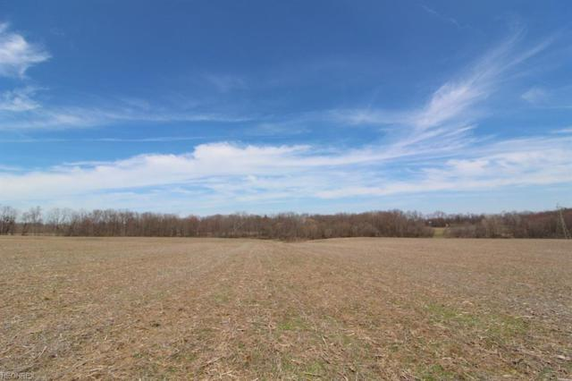 Taylor Rd, Doylestown, OH 44012 (MLS #3993520) :: Tammy Grogan and Associates at Cutler Real Estate