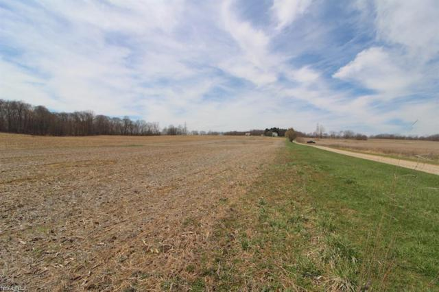 Taylor Rd, Doylestown, OH 44012 (MLS #3993676) :: Tammy Grogan and Associates at Cutler Real Estate