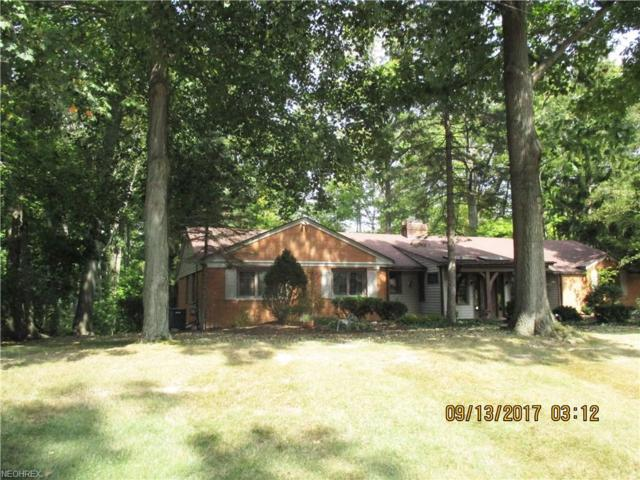 5378 Rustic Hills Dr, Medina, OH 44256 (MLS #3993822) :: The Crockett Team, Howard Hanna