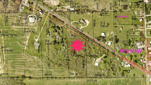 State Route 302, Polk, OH 44866 (MLS #3993938) :: RE/MAX Edge Realty