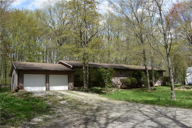 5078 Cork Cold Springs Rd, Geneva, OH 44041 (MLS #3994059) :: Tammy Grogan and Associates at Cutler Real Estate