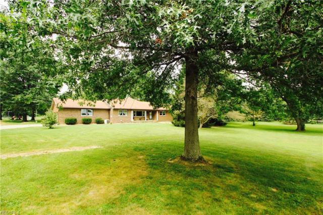 8326 Friendsville Rd, Seville, OH 44273 (MLS #3994323) :: Tammy Grogan and Associates at Cutler Real Estate