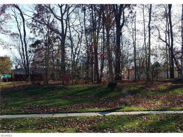 1039 Susan Rd, Ravenna, OH 44266 (MLS #3994364) :: RE/MAX Edge Realty