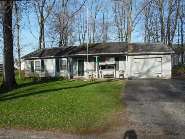 225 Cleveland, Andover, OH 44003 (MLS #3994366) :: Tammy Grogan and Associates at Cutler Real Estate
