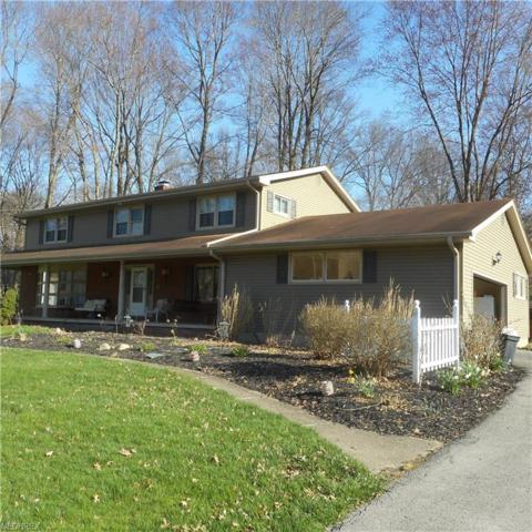 125 Woodview Dr, Cortland, OH 44410 (MLS #3994663) :: Tammy Grogan and Associates at Cutler Real Estate