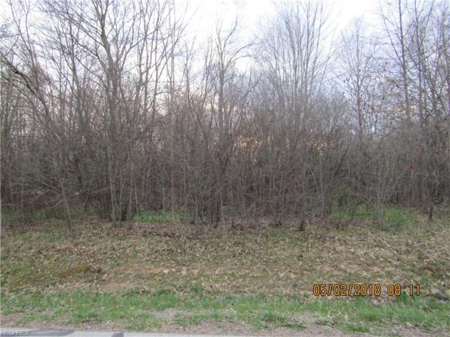 Chaffee Drive, Orwell, OH 44076 (MLS #3994667) :: RE/MAX Valley Real Estate
