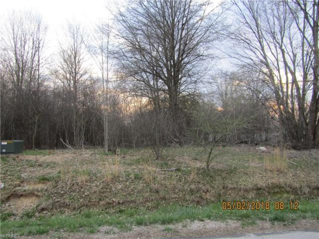 Chaffee Drive, Orwell, OH 44076 (MLS #3994669) :: RE/MAX Valley Real Estate