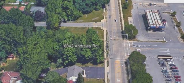 6042 Andrews Rd, Mentor-on-the-Lake, OH 44060 (MLS #3994731) :: RE/MAX Edge Realty