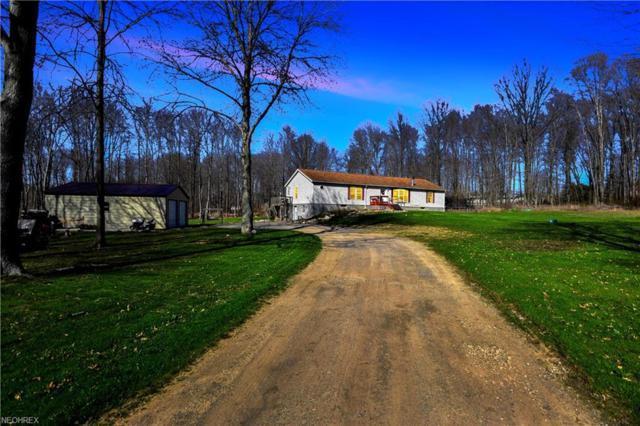 5110 State Route 82, Newton Falls, OH 44444 (MLS #3995166) :: PERNUS & DRENIK Team