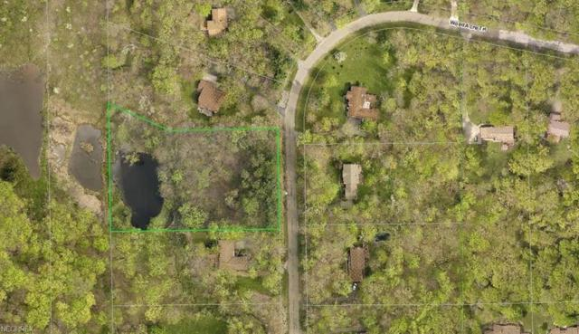 17230 Wood Acre Trl, Chagrin Falls, OH 44023 (MLS #3995464) :: Tammy Grogan and Associates at Cutler Real Estate