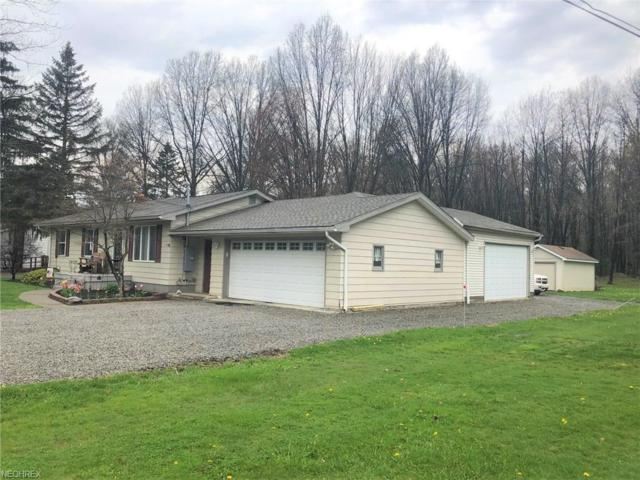 4377 Wilson Sharpsville Rd, Cortland, OH 44410 (MLS #3995598) :: PERNUS & DRENIK Team