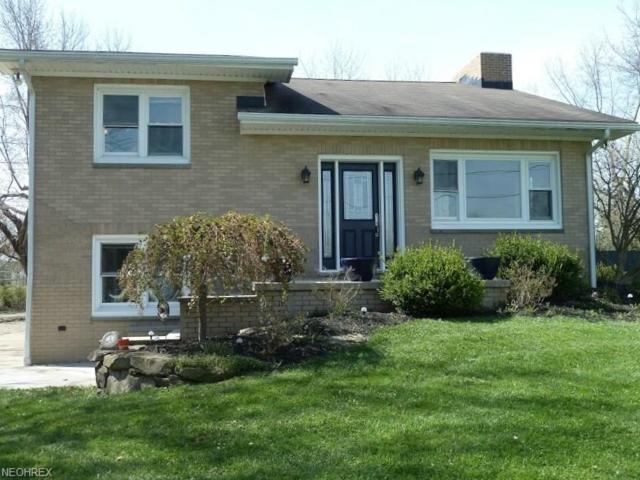 534 Hartzell Rd, North Benton, OH 44449 (MLS #3995600) :: PERNUS & DRENIK Team