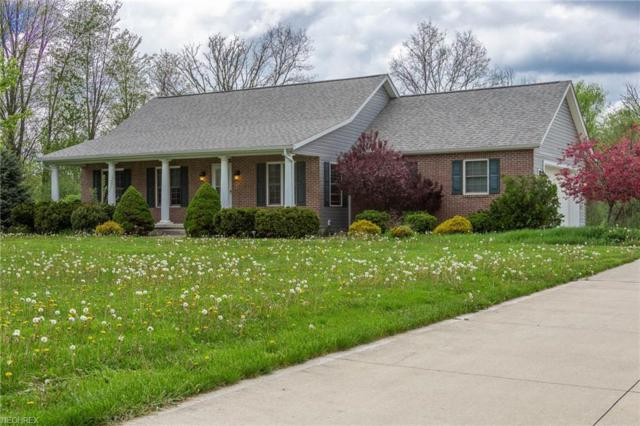 46534 State Route 303, Wellington, OH 44090 (MLS #3996076) :: PERNUS & DRENIK Team