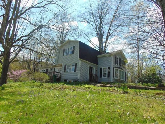 7070 Wakefield Rd, Hiram, OH 44234 (MLS #3996671) :: Tammy Grogan and Associates at Cutler Real Estate