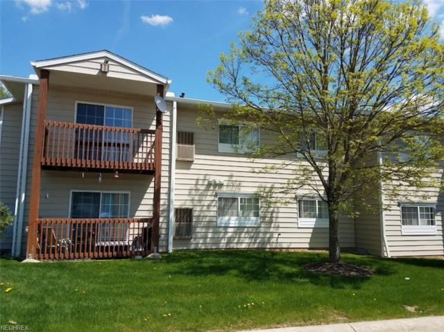 10373 Glenway Dr #201, Twinsburg, OH 44087 (MLS #3997074) :: RE/MAX Trends Realty