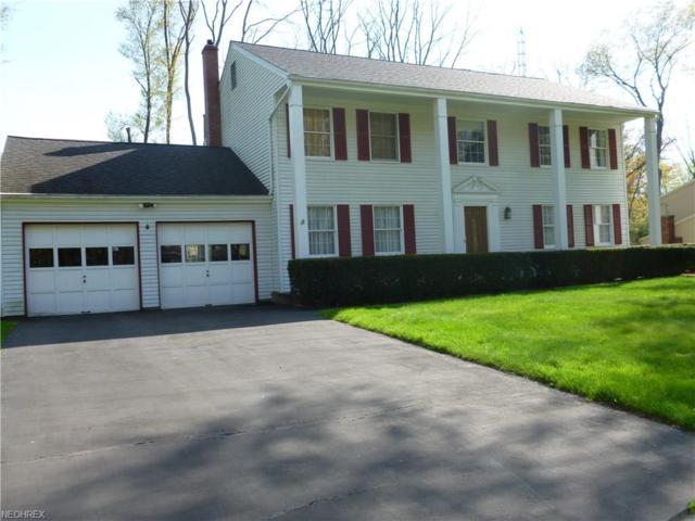 8528 Carriage Hill, Warren, OH 44484 (MLS #3997154) :: PERNUS & DRENIK Team
