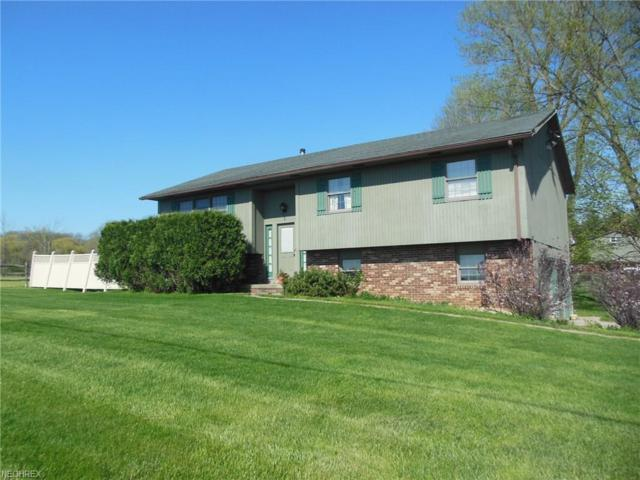 8425 Ryan Rd, Seville, OH 44273 (MLS #3997175) :: RE/MAX Trends Realty