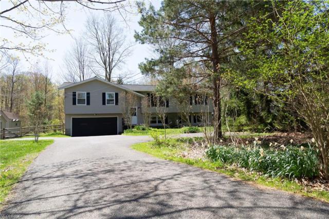 9585 Taylor May Rd, Chagrin Falls, OH 44023 (MLS #3997243) :: Tammy Grogan and Associates at Cutler Real Estate