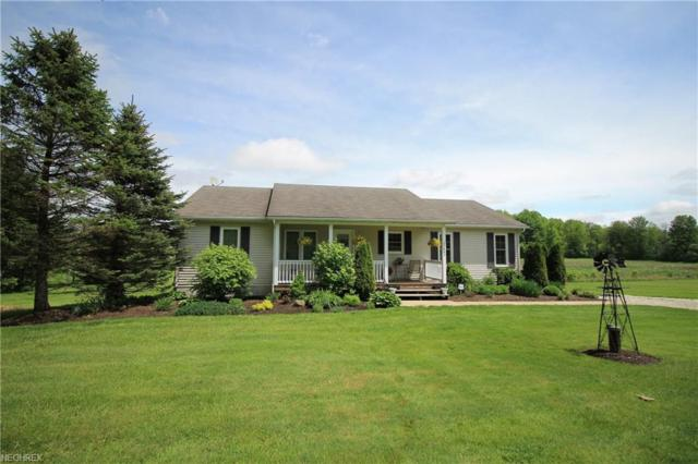 11442 Mantua Center Rd, Mantua, OH 44255 (MLS #3997252) :: RE/MAX Trends Realty