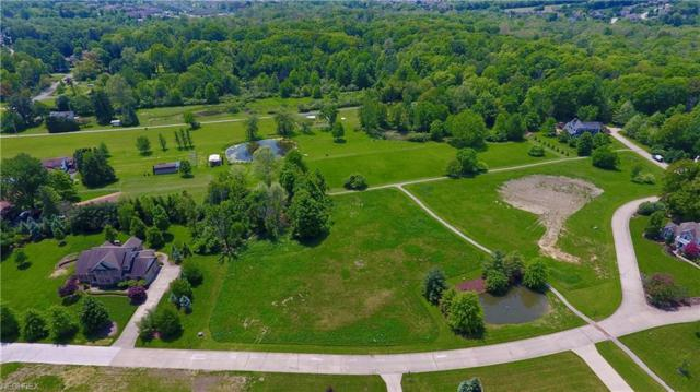 10 Heritage Trl, Poland, OH 44514 (MLS #3997450) :: RE/MAX Valley Real Estate