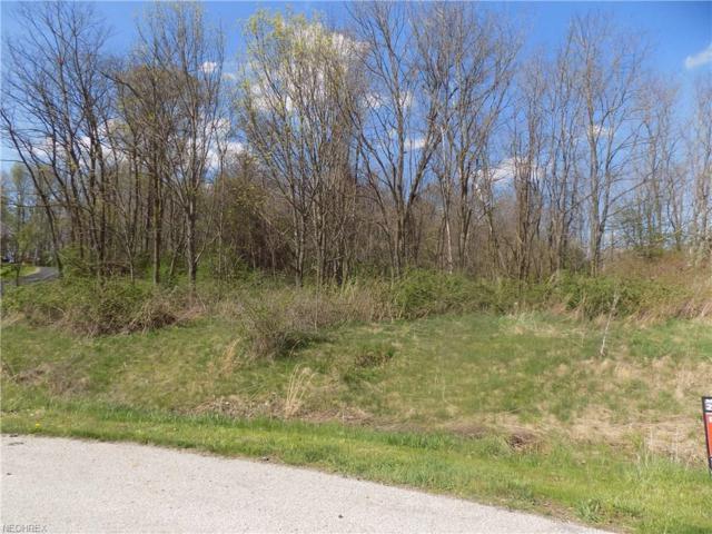 3 Stella Ln, Chagrin Falls, OH 44023 (MLS #3997684) :: The Crockett Team, Howard Hanna