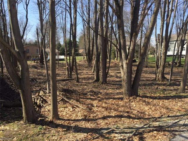 2nd Ave, Kent, OH 44240 (MLS #3997705) :: RE/MAX Trends Realty