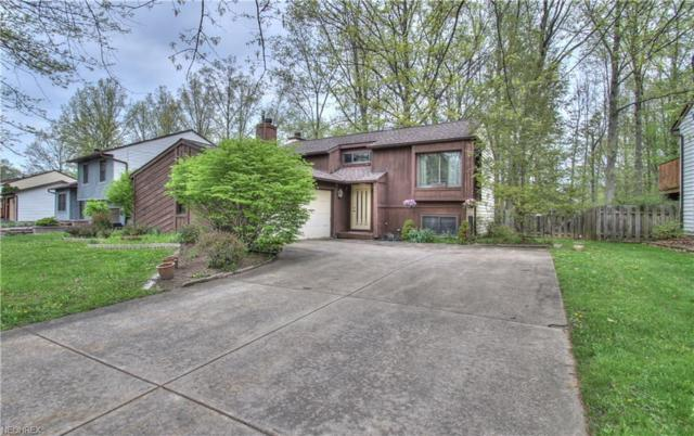 2925 Reeves Rd, Willoughby, OH 44094 (MLS #3998001) :: The Trivisonno Real Estate Team