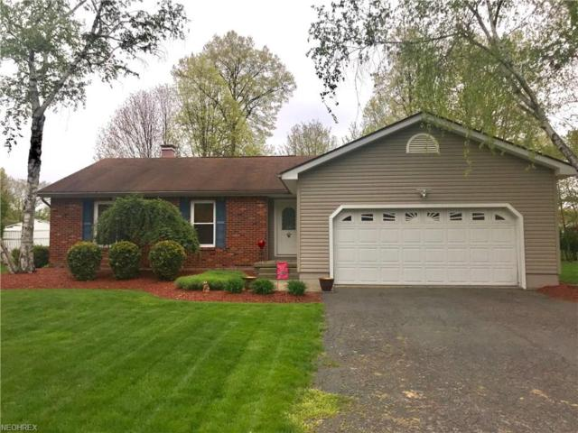 2620 Black Oak Dr, Niles, OH 44446 (MLS #3998032) :: The Crockett Team, Howard Hanna
