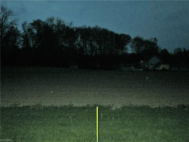 State Route 14, Columbiana, OH 44408 (MLS #3998227) :: RE/MAX Edge Realty