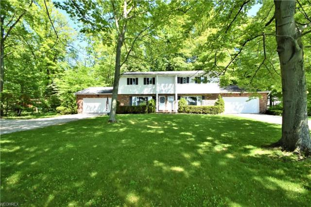 9781-9783 Acme Rd, Rittman, OH 44270 (MLS #3998389) :: RE/MAX Trends Realty