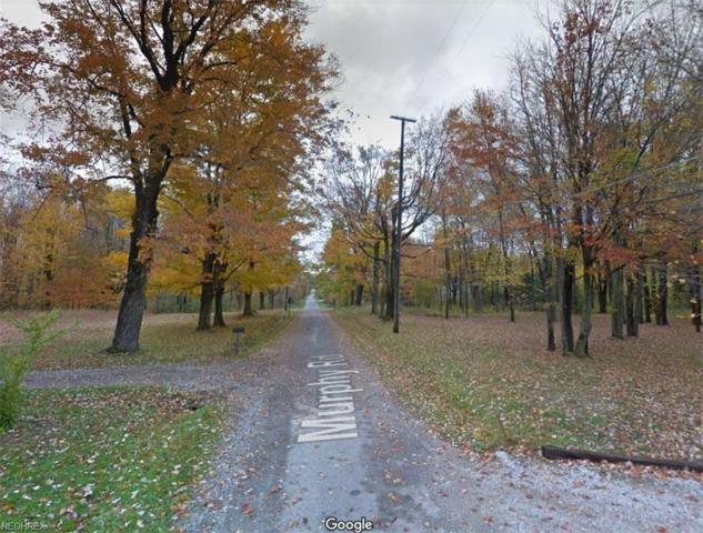VL Murphy Rd, Hartsgrove, OH 44086 (MLS #3998985) :: The Crockett Team, Howard Hanna