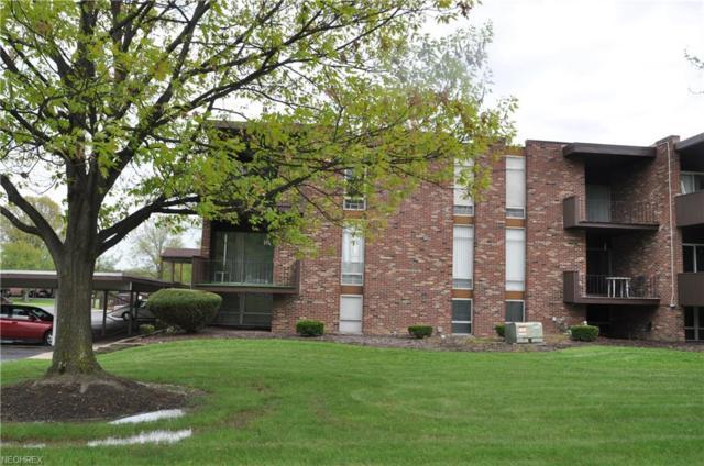 2520 N River Rd B19, Warren, OH 44483 (MLS #3999163) :: PERNUS & DRENIK Team