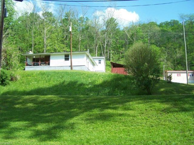 263 Lock Five Rd, Burning Springs, WV 26141 (MLS #3999196) :: PERNUS & DRENIK Team