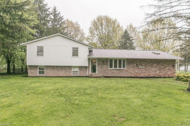 12263 E River Rd, Columbia Station, OH 44028 (MLS #3999301) :: PERNUS & DRENIK Team