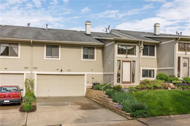 7184 N Brewster Pl, Concord, OH 44077 (MLS #3999365) :: The Trivisonno Real Estate Team
