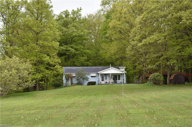 372 S Ridge Rd E, Conneaut, OH 44030 (MLS #3999424) :: PERNUS & DRENIK Team