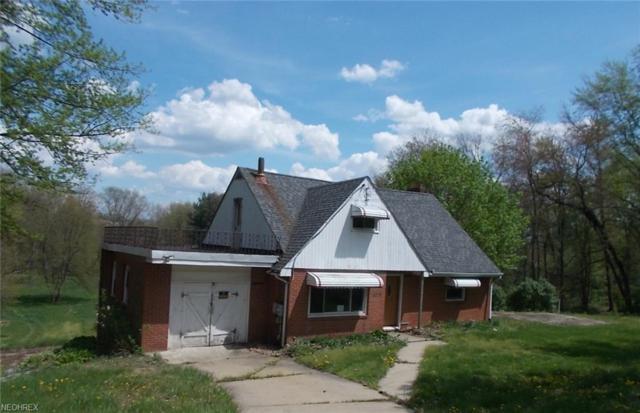 4318 Sunnybrook Rd, Kent, OH 44240 (MLS #3999452) :: PERNUS & DRENIK Team