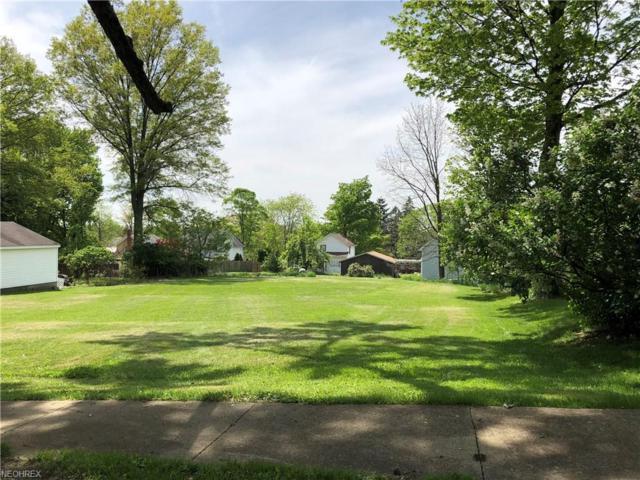 Baker Vl Ave, Lodi, OH 44254 (MLS #3999584) :: The Crockett Team, Howard Hanna